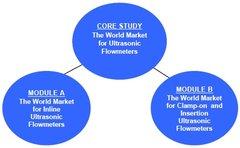 ULTRASONIC: Module A: The World Market for Inline Ultrasonic Flowmeters (PDF + Hardcopy)