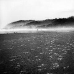Footprints on Cannon Beach