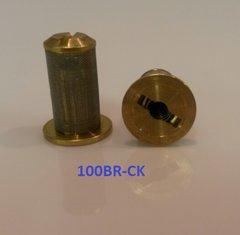 100BR-CK -100 mesh strainer