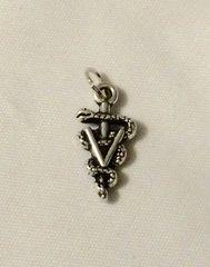 1334. Veterinarian Caduceus Pendant
