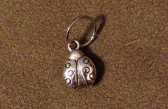 684. 2 sided Ladybug Pendant