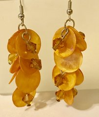 1670. Brown Shell Dangle Earrings