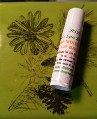 Orange Moisturizing Lip Balm-Natural Relief for Dry Chapped Lips