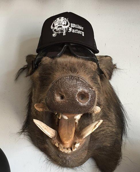 WF Mesh Hats