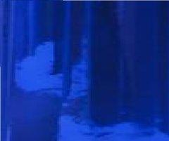 "12"" Mirrored BLUE CHROME Adhesive Vinyl"