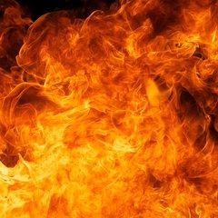 Fire Nature Print
