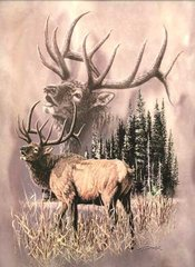 Elk Call Signature Queen Blanket