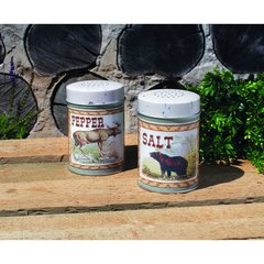 LODGE SALT AND PEPPER SET OF 2