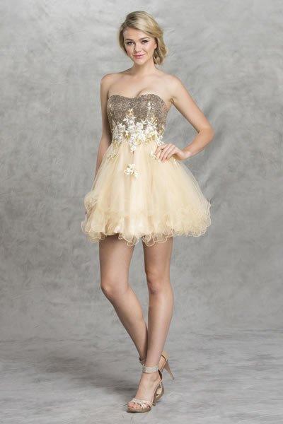 Aspeed prom dresses