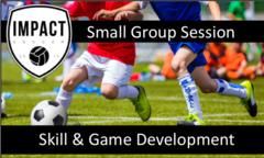 Skill & Game Development - Group Sessions (up to 4 players max)