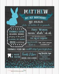 First Birthday Chalkboard Poster, Birthday Milestone Chalkboard, Bunny Chalkboard Poster, Easter Chalkboard Poster, Spring Chalkboard