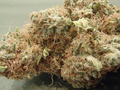 Ak-47 Weed For Sale : Ak-47 Marijuana Grade AA (Sativa)