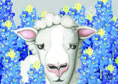 Bluebonnet Sheep