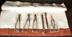Bonsai Tool Kit 7 Piece Stainless Steel - Yoshiaki