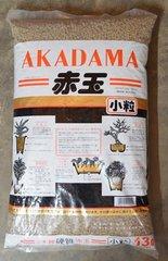 Akadama Double Line Hard
