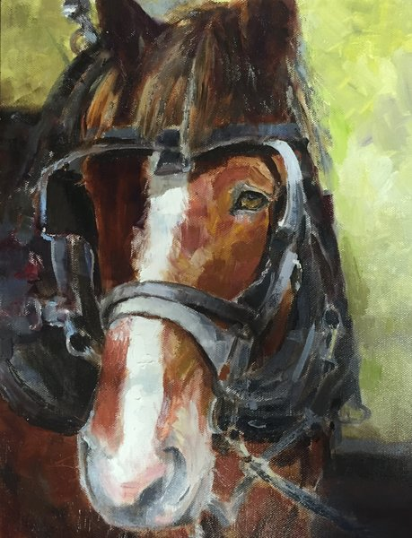 Giclee Print by Wayne E Campbell (Joey Up Close) 11x14
