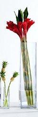 Rota Vase