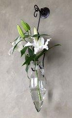 Amphora - Hanging glass