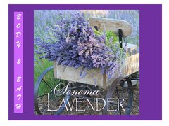Sonoma Lavender ~ Bath & Body