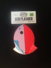 Small Leo Flasher Pink Moon Jelly