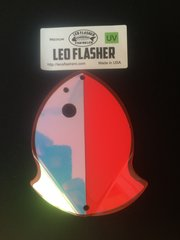 Medium Leo Flasher Pink Moon Jelly