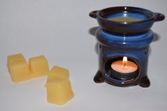 Candle Tart and Warmer