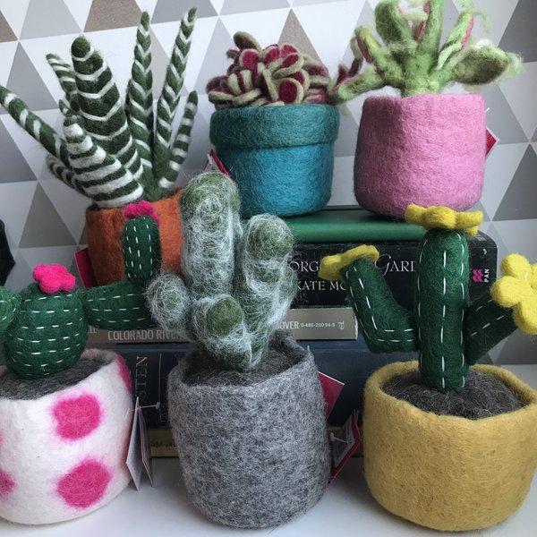 Felt Cactus Plant