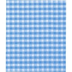 Pale Blue Gingham Tissue Paper - Ten Sheets