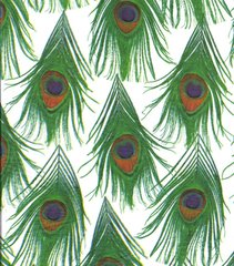Peacock Feathers Tissue Paper - 10 Sheets