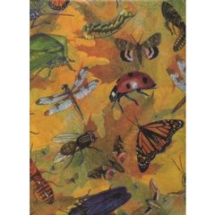 Busy Bugs Tissue Paper - Ten Sheets