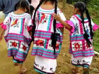 Oaxaca Huautla- Display