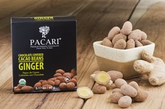 Organic Cacao Cocoa Ginger Beans