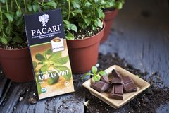Pacari Andean Mint Organic Chocolate Bar
