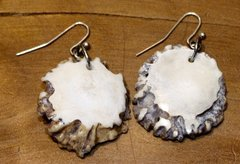 Whitetail Antler Rosette Earrings 02