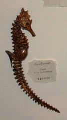 Sea Biscuit Sea Horse