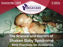 Michigan CEU Course 1202 - The Science and Horrors of Shaken Baby Syndrome - 3 CEUs