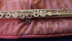 Di Zhao DZ300 Intermediate StepUp Flute