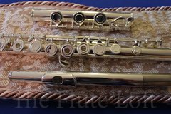 Di Zhao DZ600 Intermediate-Advanced Flute