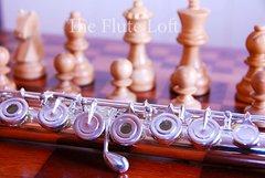 Di Zhao DZ700 Intermediate-Advanced Flute