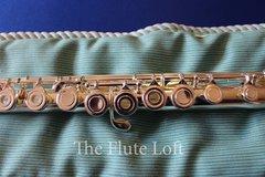 Di Zhao DZ400 Intermediate Flute