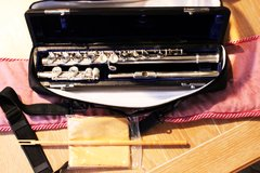 Di Zhao DZ200 Series Beginner and Step-Up Student Flutes
