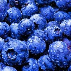 Blueberry Aged Dark Balsamic