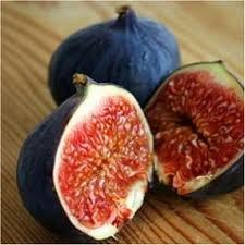 Fig Aged Dark Balsamic