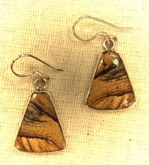 Triangular Picture Jasper Earrings