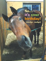 Birthday Card: So it's your birthday! (nudge, nudge) - Item # GC Mug