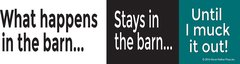 Bumper Sticker: What happens in the barn, stays in the barn until I muck it out  - Item# B Vegas