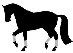 Sticker: Dressage Horse - Item # WS Dressage