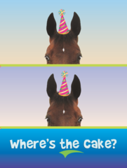 Birthday Card: Where's the Cake? - Item # GC Boo Boo