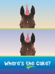 Birthday Card: Where's the Cake? - Item # GC Boo Boo