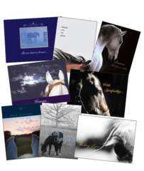 25 SYMPATHY Card Pack - 25 Best Selling Equine Sympathy Greeting Cards - Item # RP-25 Sym